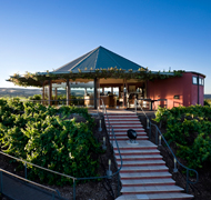 Hugh Hamilton Cellar Door