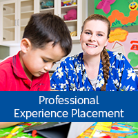 Professional Experience Placement