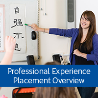Professional Experience Placement Overview