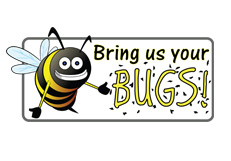 Citizen Science - Bring Us Your Bugs