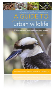 A Guide to Urban Wildlife