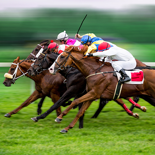 Horse racing betting centres in sydney aston villa betting manager job