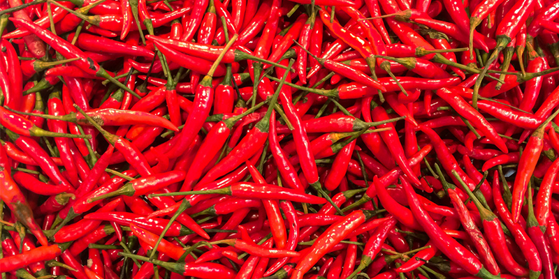 Chilli consumption has been found to be beneficial for body weight and blood pressure in previous studies but researchers have also found adverse effects on cognition among older adults.